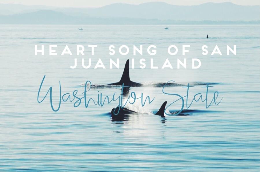 Why everyone should visit San Juan Island, Washington State